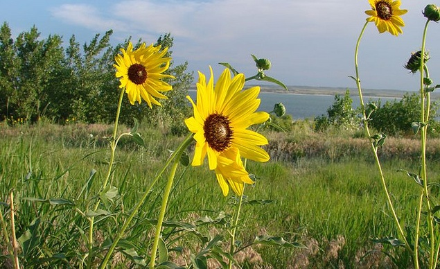 Lake McConaughy Listed in Top 27 Camping Places