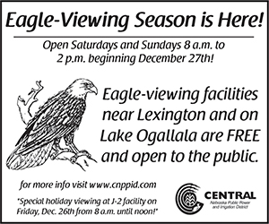 Eagle-Viewing Season Begins This Weekend
