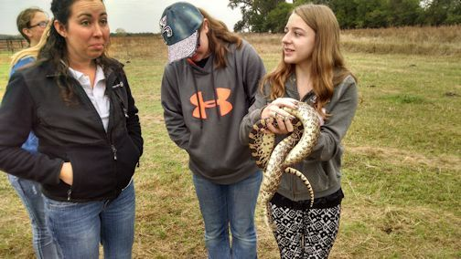 Chelsey_student_and_bullsnake_Jeffrey_Island