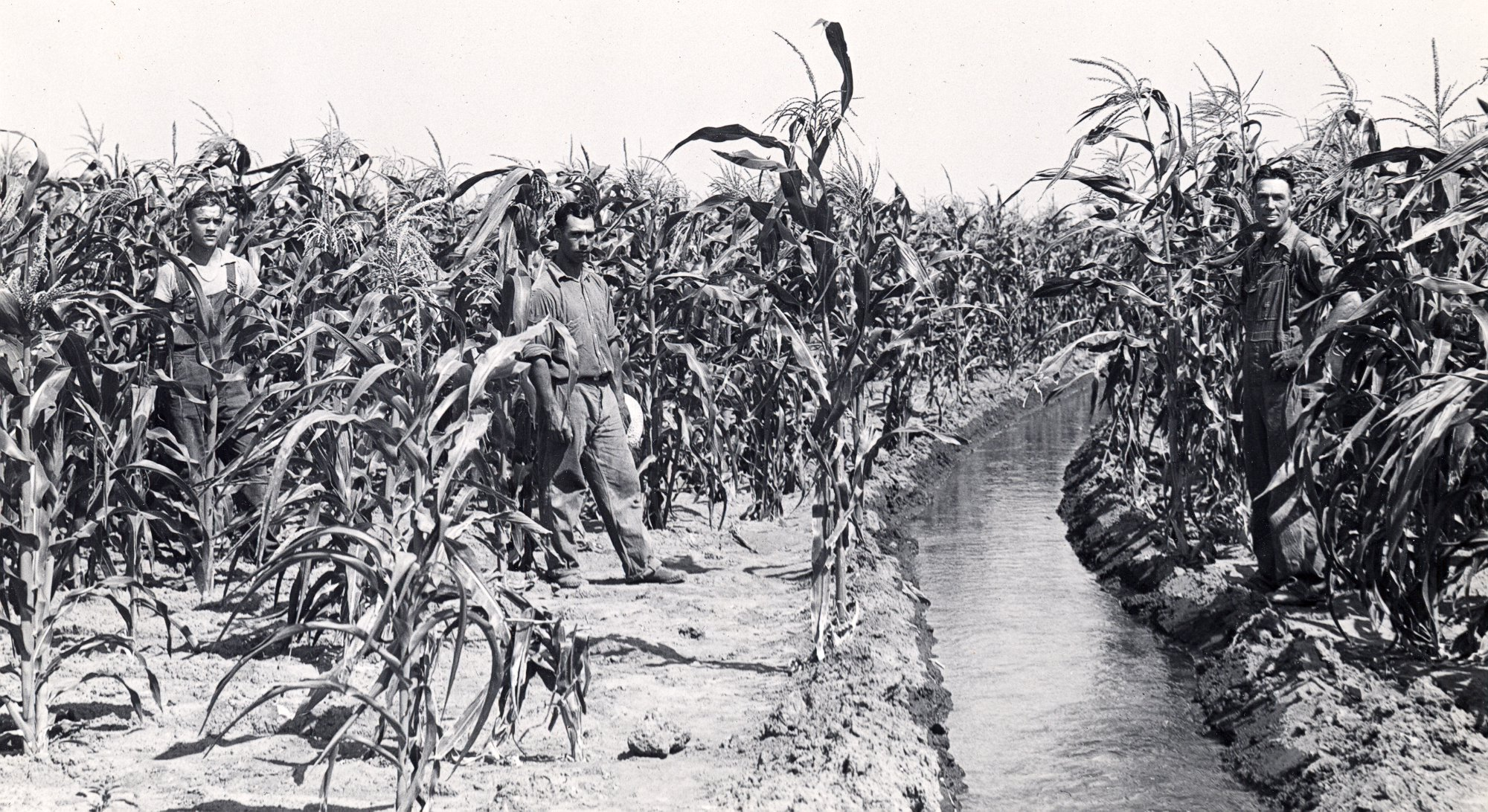 Central marks 75th anniversary of irrigation deliveries from Lake McConaughy