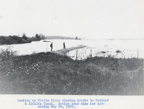 Orchard Alfalfa Canal
