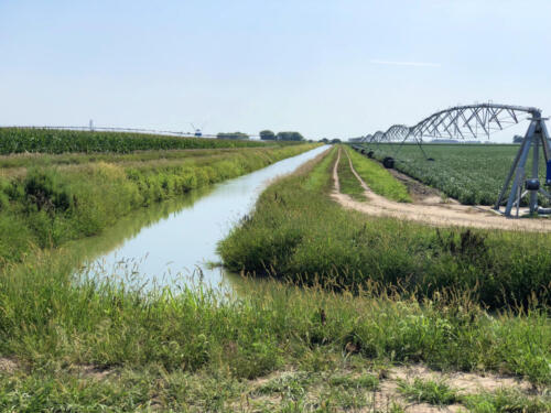 canal pivot