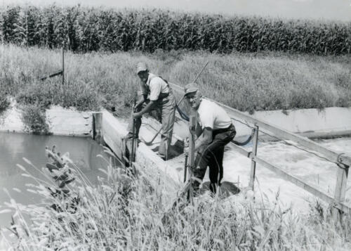 irrigation employees adjusting gates