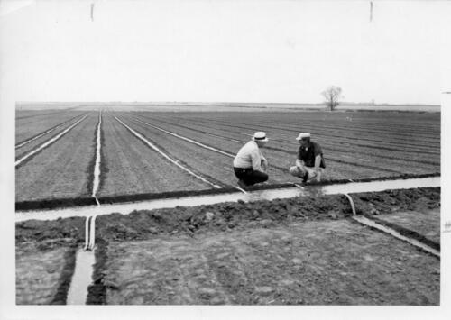 making irrigation adjustments